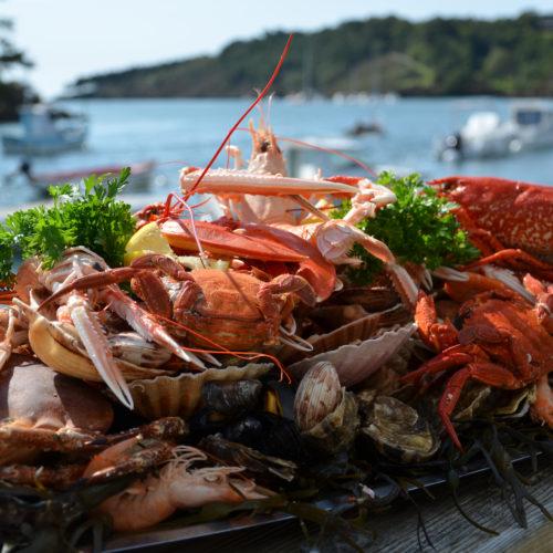 Plateau de fruits de mer royal - Les Viviers du bélon - Riec-sur-bélon